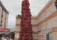 Árvore de Natal do HMU, com 5 metros de altura, consumiu 860 garrafas peti