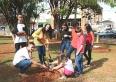 Neste Dia da Árvore, PMU planta 18 mudas de ipê amarelo na Praça JK