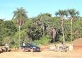 PMU prepara revitalização hidroambiental de área do nascente Parque Duca Menezes