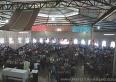 Festa do Boqueirão:  ampliado período de isolamento social no distrito, de 30 de abril a 15 de junho