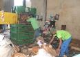 Areuna pede população para separar o lixo e identificar o reciclável